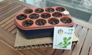 Spring Gardening with Orta Plastic-Free Self-Watering Seed Pots